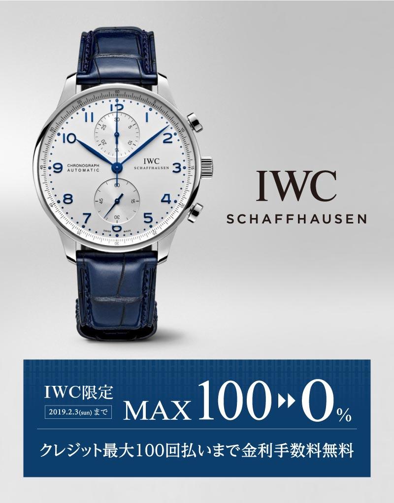 IWC_max100_201901_800_1022