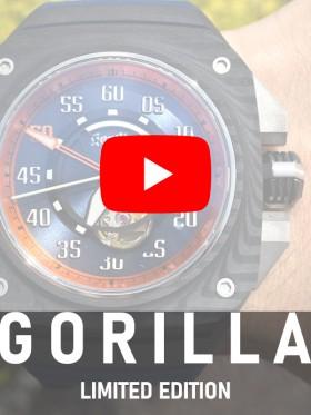 gorilla_20210925